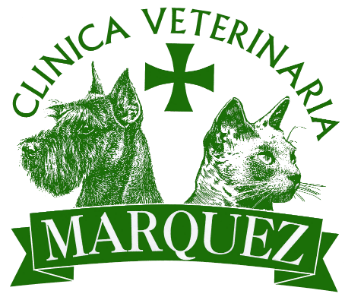 clinica-veterinaria-marquez